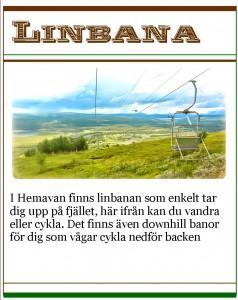 Hemsida aktiviteter Linbana